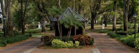 Windermere Oaks Homes for Sale Windermere Florida Real Estate