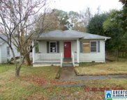 115 Wolf Creek Rd, Pell City image