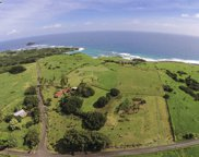 815 Haneoo Road Lot#1, Hana image