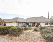 741 Blue Herron  Court, Valley Springs image
