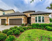 10911 Charmwood Drive, Riverview image