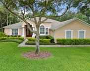 4376 Berry Oak Dr, Apopka image