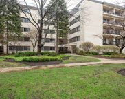 407 Franklin Avenue Unit 3C, River Forest image