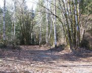 0 Lot 7, NE Blue Ridge Dr, Poulsbo image