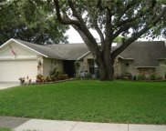 3739 Erin Brook Drive, New Port Richey image