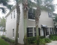 10020 Old Haven Way, Tampa image
