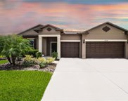 30238 Hackney Loop, Mount Dora image