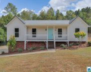 100 Twin Lakes Rd, Trussville image