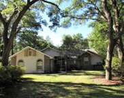 7983 SW 186 Circle, Dunnellon image