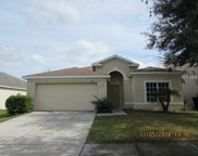 1627 Emerald Hill Way, Valrico image