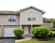12516 South Deer Park Drive, Alsip image