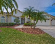 12131 Clear Harbor Drive, Tampa image