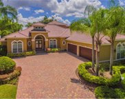 9712 Tree Tops Lake Road, Tampa image