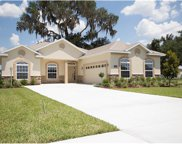 9733 Pepper Tree Place, Wildwood image