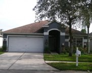 11212 Cypress Reserve Drive, Tampa image
