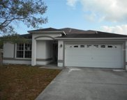 1101 Sunset Drive, Tarpon Springs image