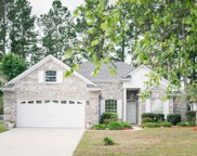 486 Blackberry Ln, Myrtle Beach image