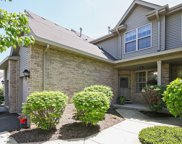 9017 Mansfield Drive, Tinley Park image