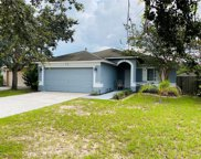 3127 Summer House Drive, Valrico image