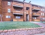 335 Wright Street Unit 207, Lakewood image