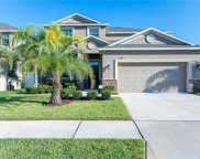 12426 Ballentrae Forest Drive, Riverview image