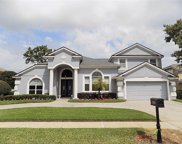 3891 Brantley Place Circle, Apopka image