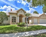 9174 Highland Ridge Way, Tampa image