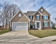 12114 Enmore  Park, Fishers image