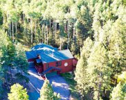 25248 Red Cloud Drive, Conifer image