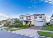 14424 Brushwood Way, Winter Garden image