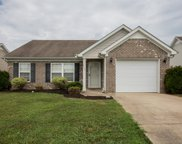 3014 Deer Trail Dr, Spring Hill image