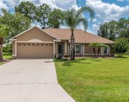 29 Buffalo Plains Lane, Palm Coast image