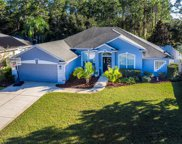 151 Black Hickory Way, Ormond Beach image