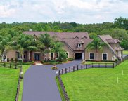 11467 Trotting Down Drive, Odessa image