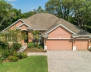787 Rock Creek Street, Apopka image