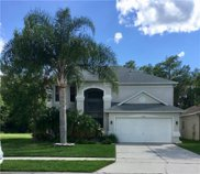 3275 Falcon Point Drive, Kissimmee image