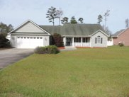308 River Bluffs Drive, New Bern image