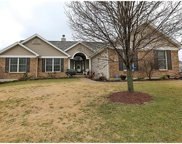 1554 River Birch, St Peters image