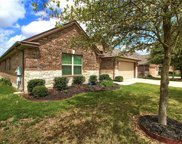 1491 Coldwater Holw, Buda image