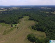 Hwy 47 Unit 53 acres, Blountsville image