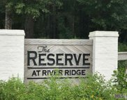 9098 Ridgeway Ave, Denham Springs image