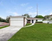 231 Hillside Drive, Clermont image