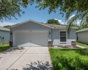 7846 Carriage Pointe Drive, Gibsonton image