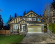 10682 244 Street, Maple Ridge image