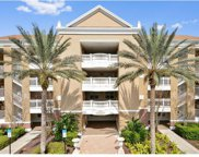 1106 Sunset View Circle Unit 204, Reunion image