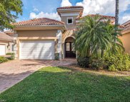 22171 Natures Cove Ct, Estero image