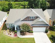 12226 Gadwell  Place, Indian Land image