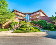 702 Waukegan Road Unit 305, Glenview image