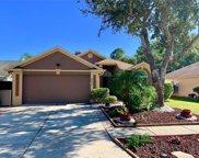 8553 Manassas Road, Tampa image