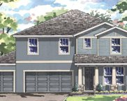 4032 Blue Lantana Lane, Land O' Lakes image